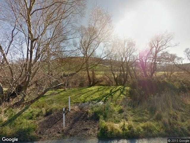 Image of Kakahu Bush, Canterbury, New Zealand